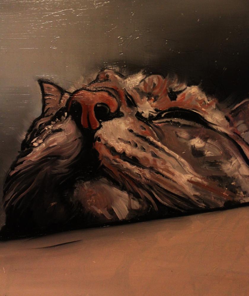 « Le Chat », huile sur toile, 60x80 cm (disponible)